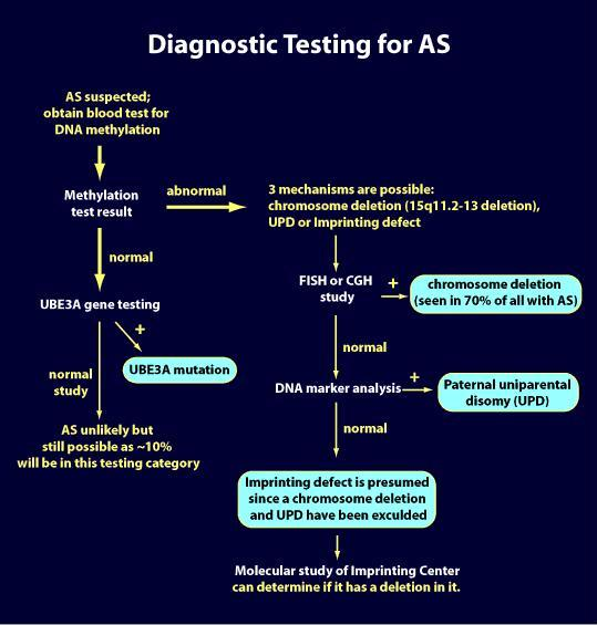 Diagnotic testing for AS Diagram