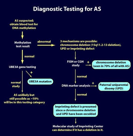 Diagnostic testing for Angelman Syndrome