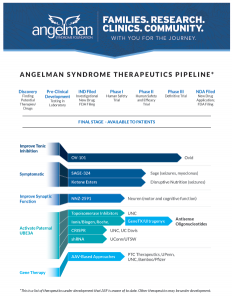 Angelman syndrome Therapeutic Pipeline