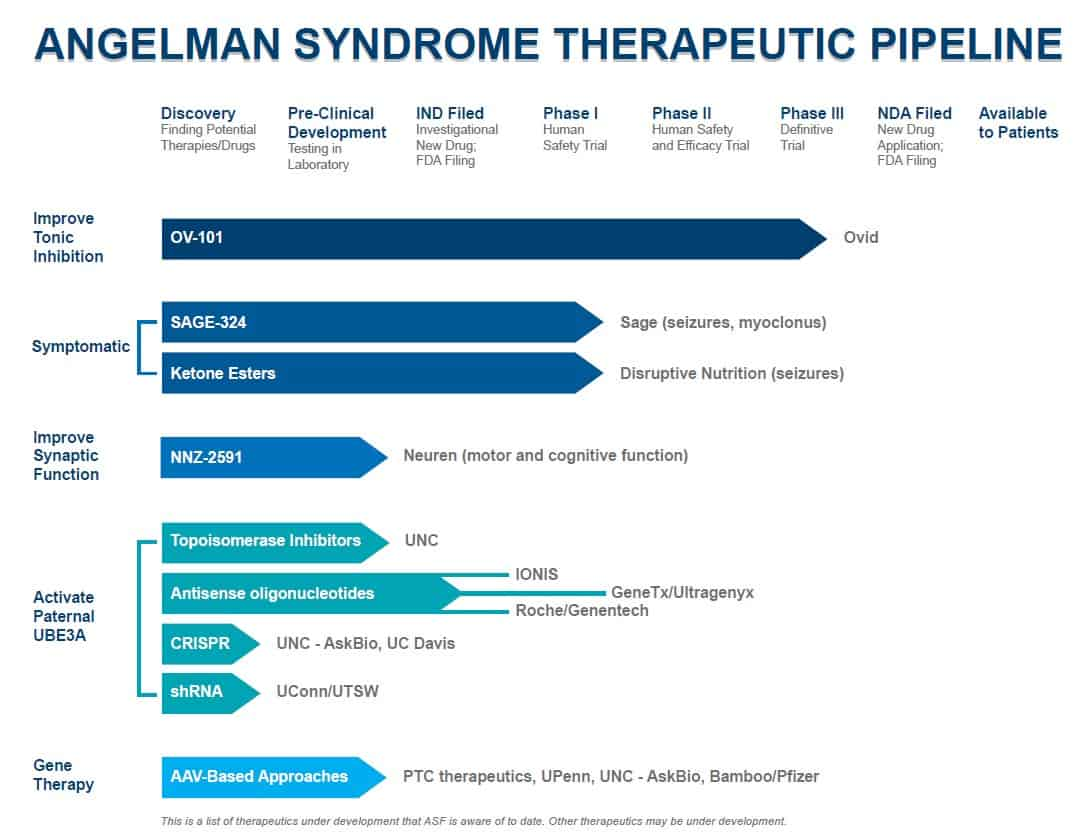 Therapeutic pipeline for Angelman syndrome