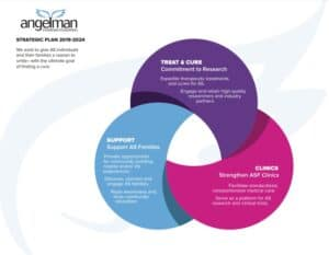 Three parts of a circle with the 3 areas of focus: Treat and cure AS, support Angelman families and Strengthen the ASF AS Clinic network